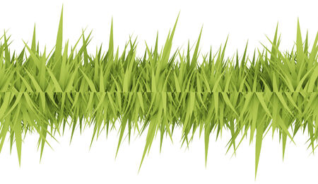 Green grass concept rendered on white photo