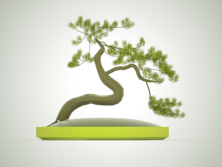Bonsai tree rendered on dark background photo