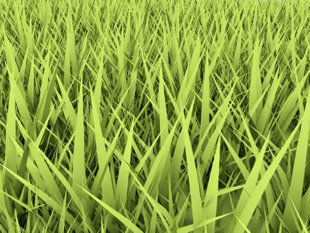 Green grass rendered photo