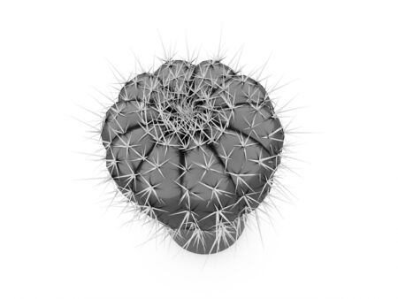 subtropics: Black and white cactus concept rendered on white background