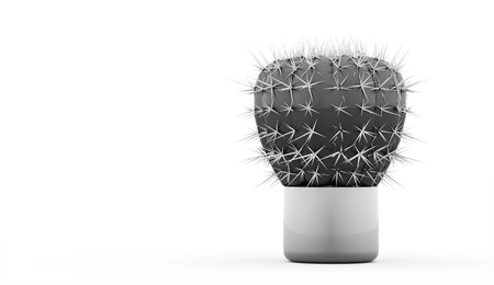 subtropics: Cactus rendered isolated on white background Stock Photo