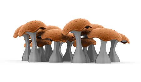 food poison: Mushrooms rendered isolated on white background Stock Photo
