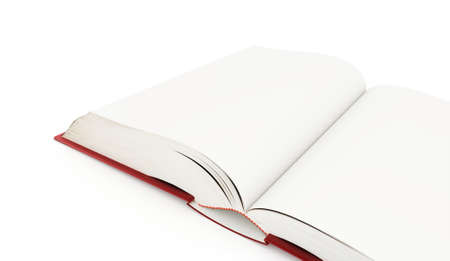 opened book: Blank opened book rendered