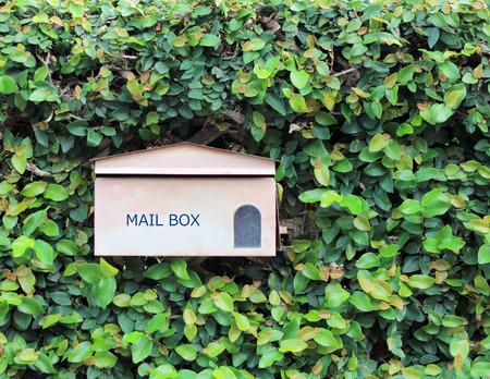 mail box photo