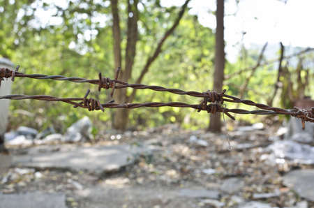 close up of rusty barbed wire Stock Photo - 13408027
