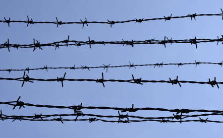 barbed wire silhouette on blue sky Stock Photo