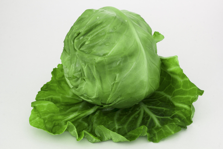 Fresh green cabbage organic vegetable on a white background close up Zdjęcie Seryjne