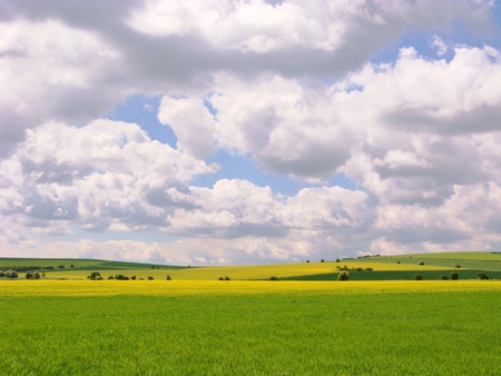 Rural scene in England with puffy clouds and the yellow of oil seed rape Stock Photo - 16296423