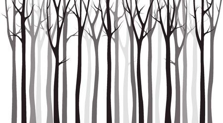 Sagoma di legno di betulla su sfondo bianco