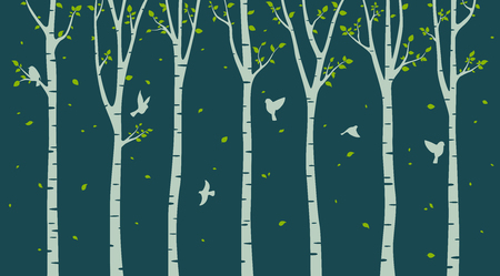 Birch tree with birds silhouette on green background