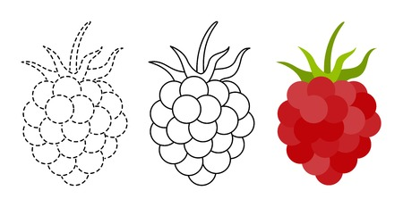 Raspberry to be colored and trace line educational game for background, promotion, sale, template, banner, flayer, poster and other Illusztráció