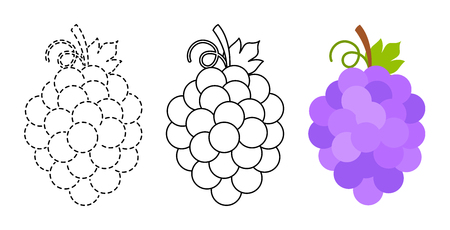 Grape to be colored and trace line educational game for background, promotion, sale, template, banner, flayer, poster and other