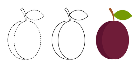 Plum to be colored and trace line educational game for background, promotion, sale, template, banner, flayer, poster and other