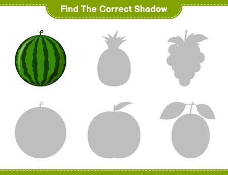 Find the correct shadow. Find and match the correct shadow of Ita Palm. Educational children game, printable worksheet, vector illustration
