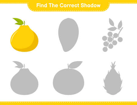 Find the correct shadow. Find and match the correct shadow of Ximenia. Educational children game, printable worksheet, vector illustration
