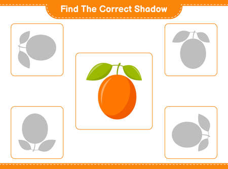 Find the correct shadow. Find and match the correct shadow of Grape. Educational children game, printable worksheet, vector illustration