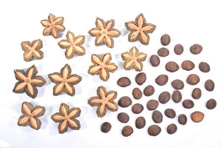 inca: sacha inchi, sacha mani or star inca peanut seed