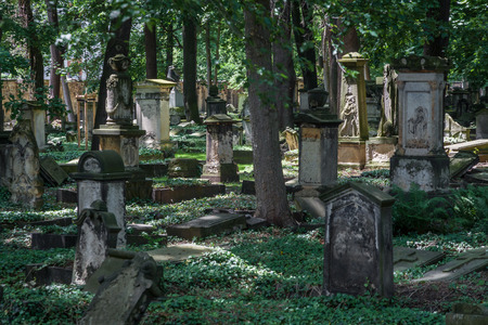 Old cemetery 스톡 콘텐츠
