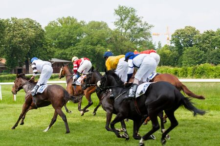 Horses with jockey during derby race 版權商用圖片