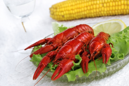 Fresh seafood dish with boiled lobster and wine photo