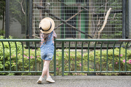 Back view of little curious girl watching animals at the zoo Stock Photo