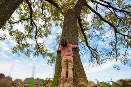 Large tree and a little girl