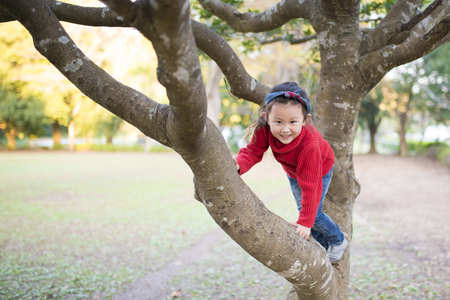 Little girl trying to climb up on the tree Stock Photo