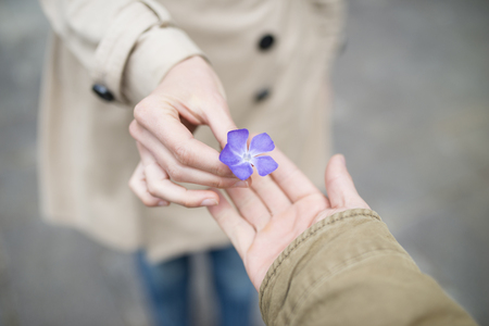 Woman give a purple flower to man