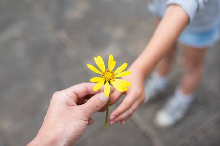 Parent and child handing over yellow flowers Stock fotó