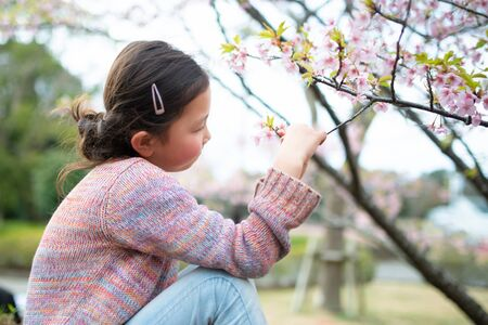 Cute girl with cherry blossoms