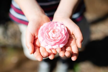 Child holding a pink flower