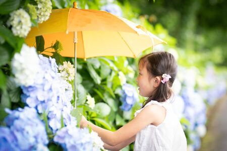Girl sniffing the scent of hydrangea flowers