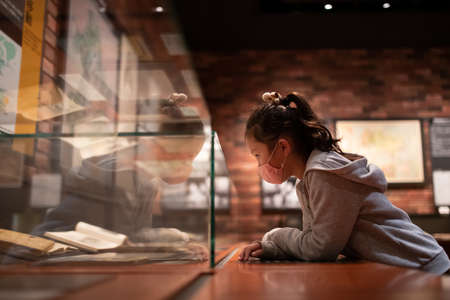 Girl looking at exhibits at the museum 版權商用圖片