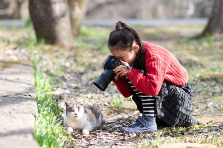 Girl taking pictures of cats
