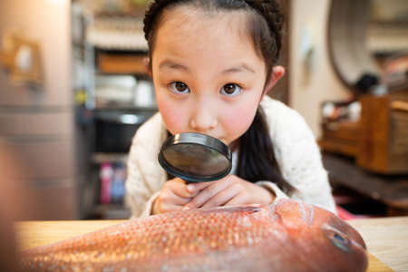 Girl observing fish with a magnifying glass Stok Fotoğraf