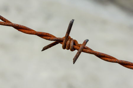 Old barbed wire at the rusted fence