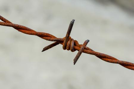 錆びたフェンスの古い有刺鉄線