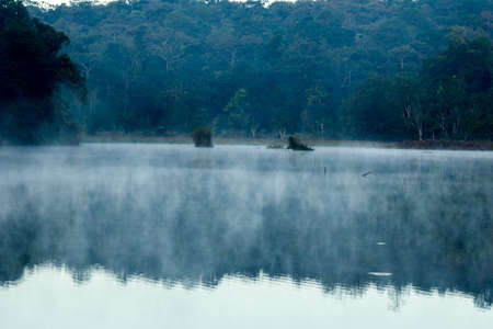 A misty landscape floating from the surface of the water