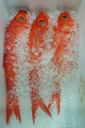 A Photo of Alfonsino or Kinmedai at fish market.