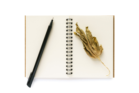 Note book, dry leaf and a pen isolated on the white background Stock Photo