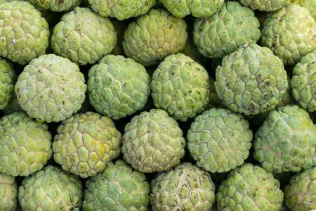 A pile of green sugar apple at fruit market in Thailand 免版税图像 - 128486412