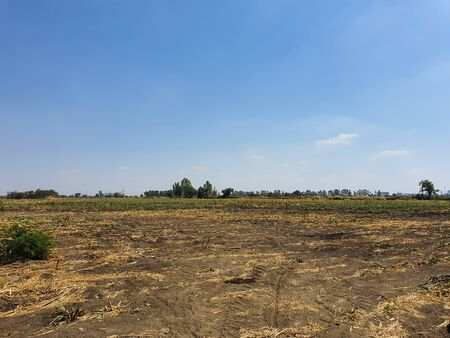 Drought fields and blue sky in Thailand