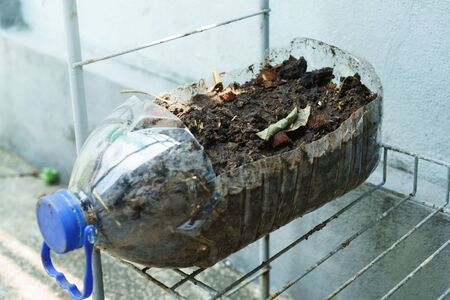 Plastic water bottle that is cut and used as plant pot