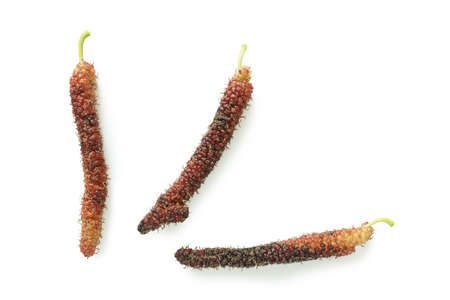 Taiwan mulberry fruit isolated on the white background