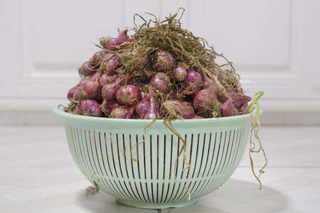 A pile of shallots in a plastic basket