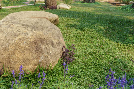 Large stones are used to decorate the lawn in the garden.