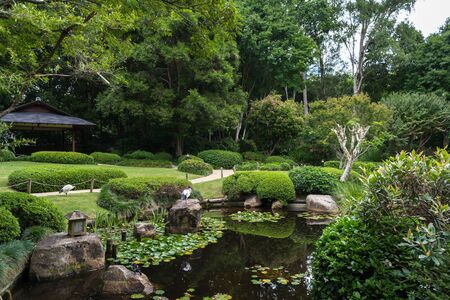 The beautiful peaceful view on the small lake with rocks, birds ibis, little japanese lighting appliance and water lilies in tne Japanese Garden, Brisbane Bonanical Garden, Australia Stock Photo