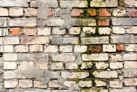 Viejo y sucio muro de ladrillo mohoso y cubierto de musgo con fondo de yeso pelado. Foto de archivo