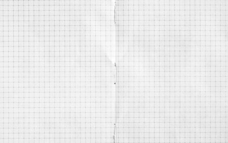 Double spread of white checkered exercise book paper. Notebook paper texture background. Stock Photo
