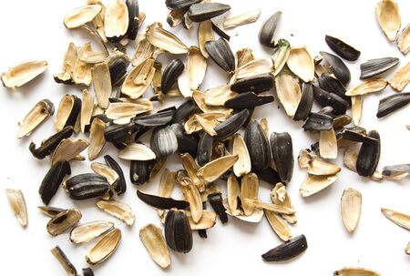Closeup pile of peels from sunflower seeds on white background.